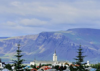 View from Reykjavik city between trees