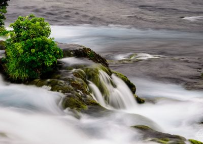 Water flowing from a small rock with plants on its, in a river, looking like milk