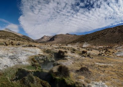 Panoramic view of geysers and lamas surrounded by mountains