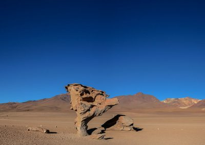 Red and tall rock with a tree shape in the red desert