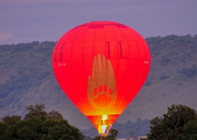 Red balloon ready to take off in the early morning purple sky