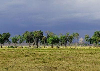 Panoramic landscape of kenya savannah