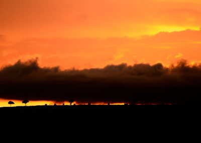 Panoramic red sky with black clouds at sunrise