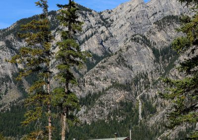 Horse stable surrounded by tall trees and mountains