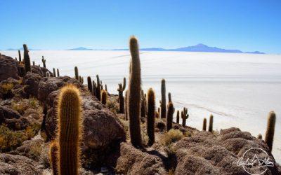 Salar de Uyuni Discovery