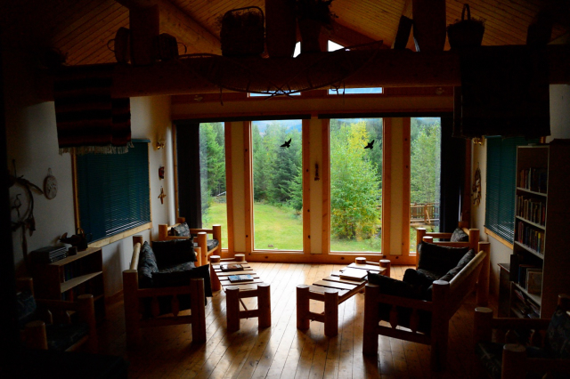 Inside of wooden cottage with wall in window facing forest