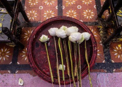 White flowers in a plate on tiles with flowers