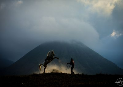 Silhouette of a horse jumping in front of a man with dust highlighted by ray of light and mountain in the background