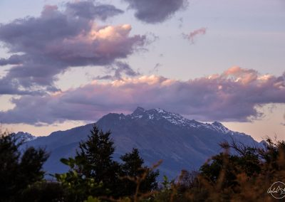 Purple mountain with tree in the foreground and clouds above with a purple and pink blue sky